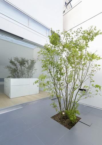 150804_neo-takada_21